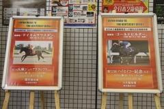 191216 全日本2歳優駿ステップレース紹介-04