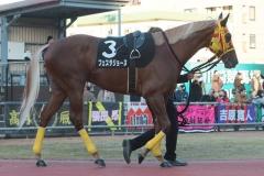 200101 17thゴールデンホース賞-05