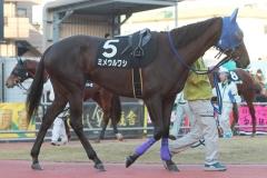 200101 17thゴールデンホース賞-07