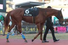 200101 17thゴールデンホース賞-08