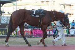200101 17thゴールデンホース賞-09