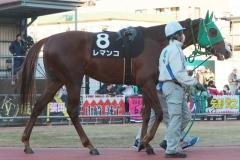 200101 17thゴールデンホース賞-10