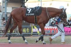 200101 17thゴールデンホース賞-11
