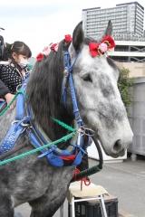200102 ばん馬とのふれあい-02