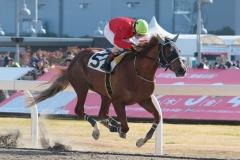 200103 山崎誠士騎手 1,400勝-01