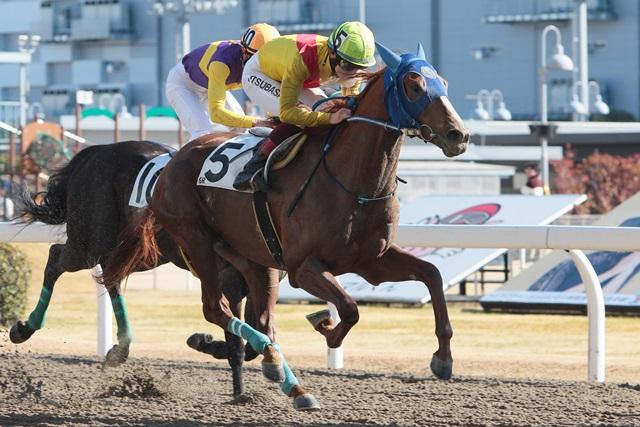200129 川崎記念3連覇ホッコータルマエメモリアル-04 優勝はアルファフレイム