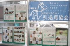 200129 引退馬協会特設ブース-02