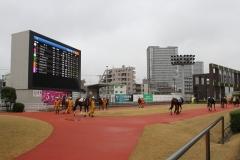 200302 無観客競馬開催の様子-05