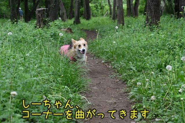 d-D75_5612.jpg