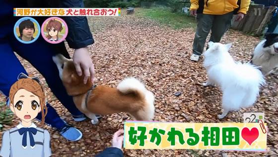 22/7 計算中 第75回 | 河野都生誕祭 富士すばるランド