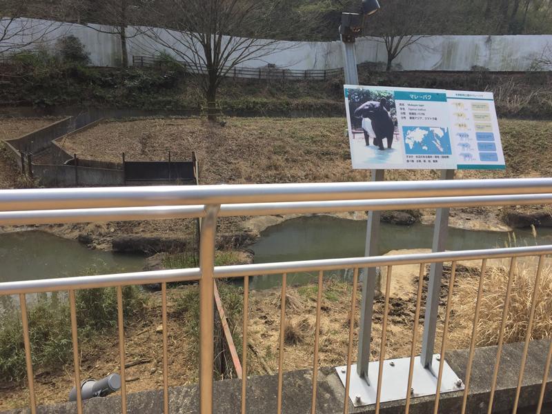 多摩動物公園6