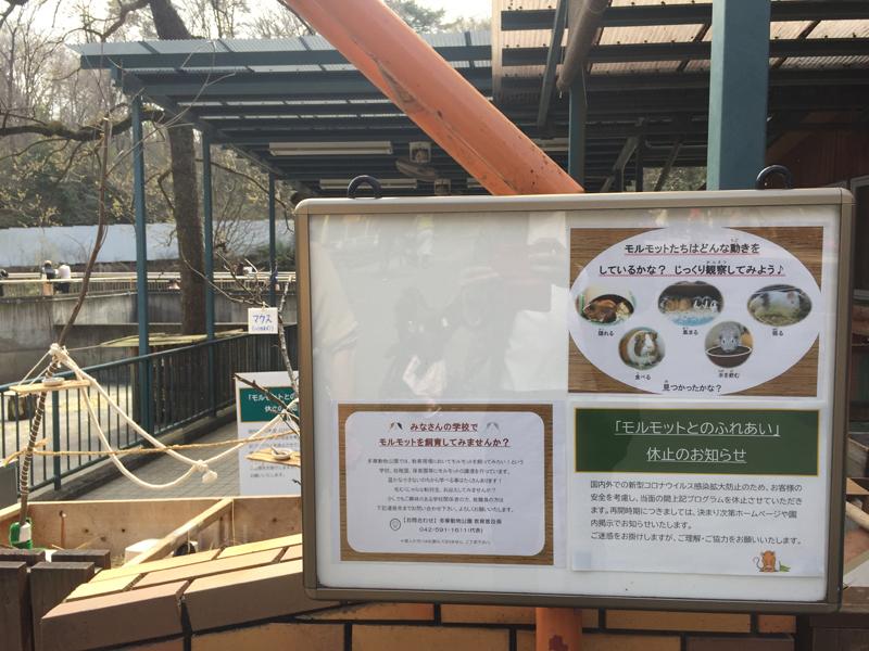多摩動物公園10