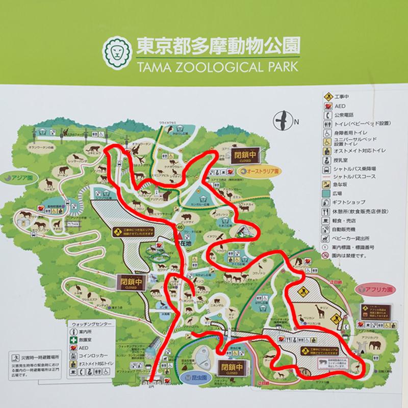 多摩動物公園14