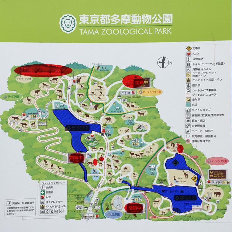 多摩動物公園15