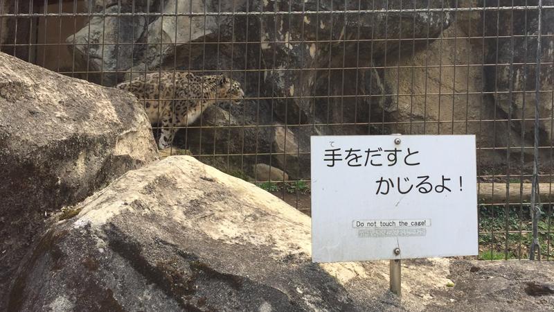 多摩動物公園37