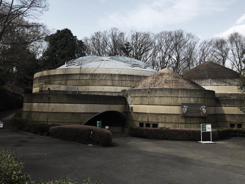 多摩動物公園24