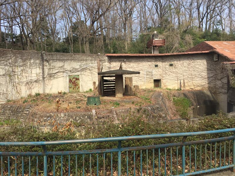 多摩動物公園57