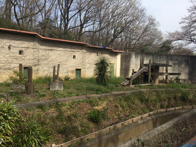 多摩動物公園58
