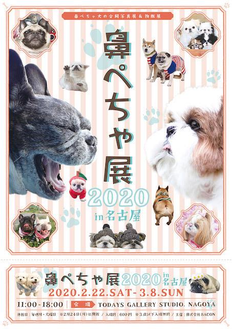 鼻ぺちゃ展2020in名古屋_T_1000×1500