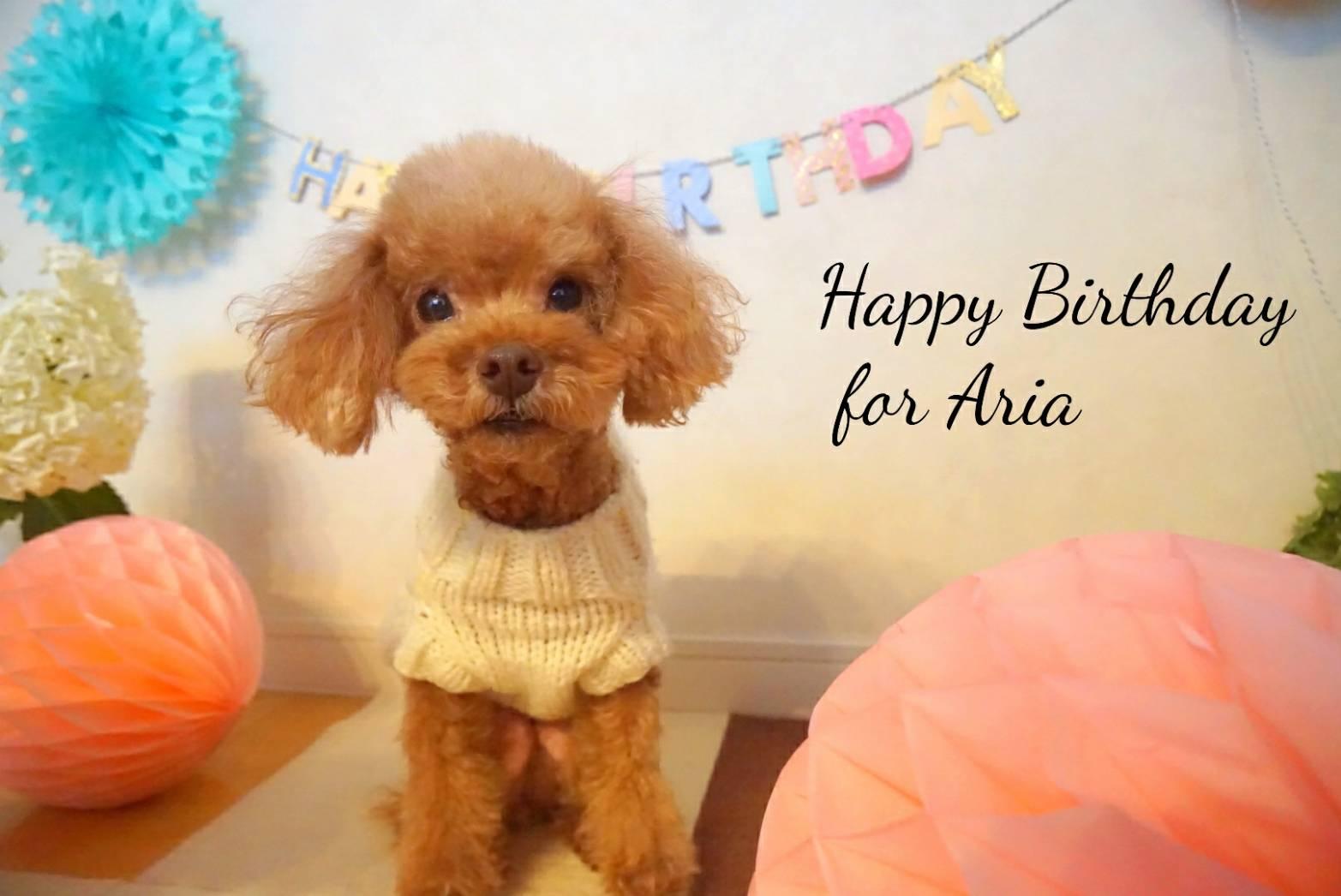 アリア9歳の誕生日11