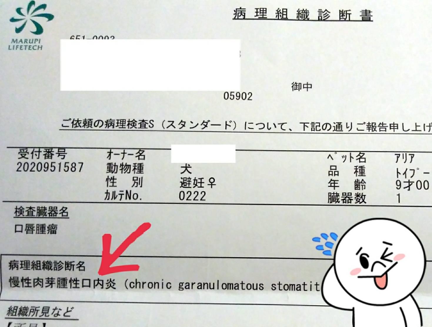 腫瘍騒動202019