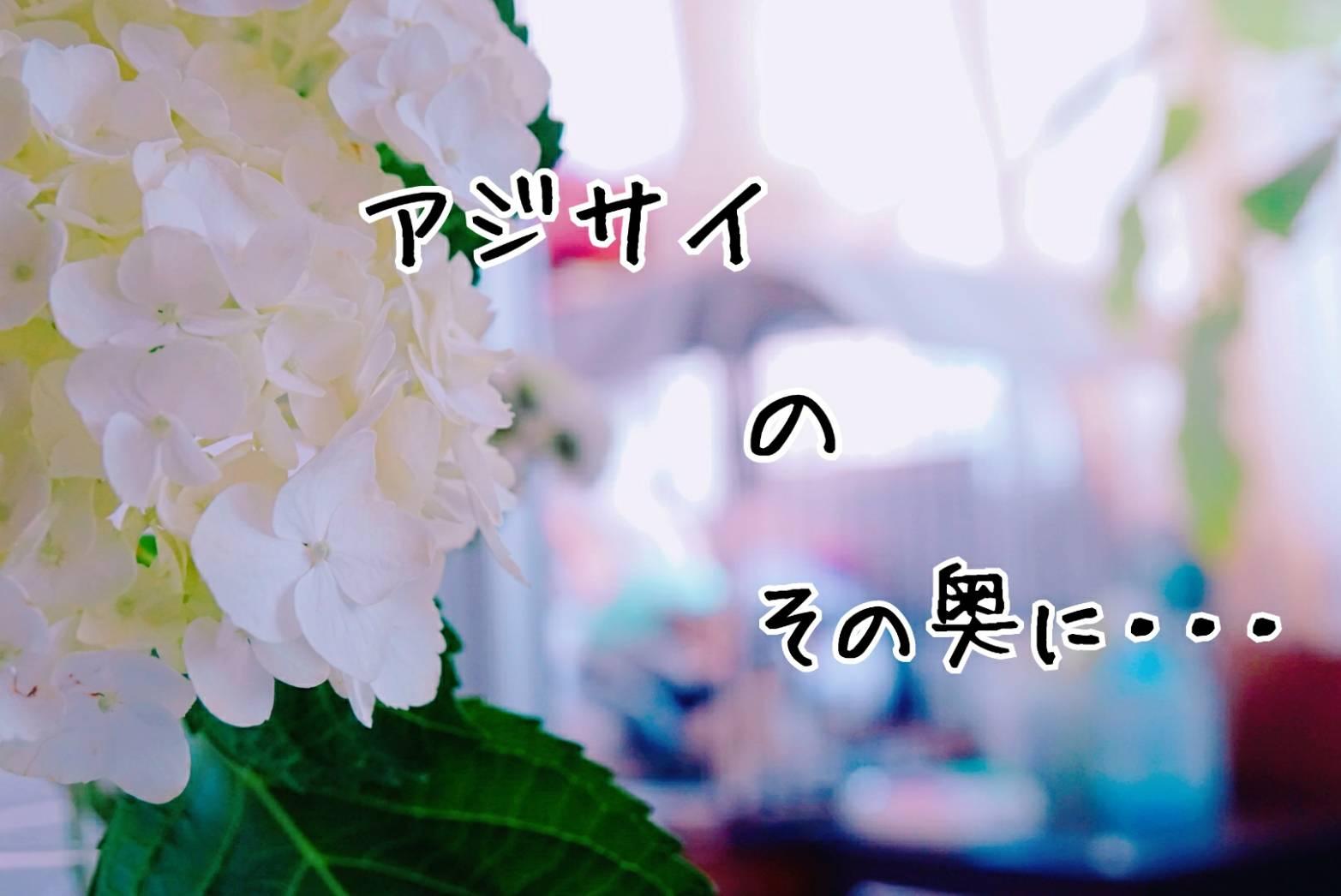 ララの事13