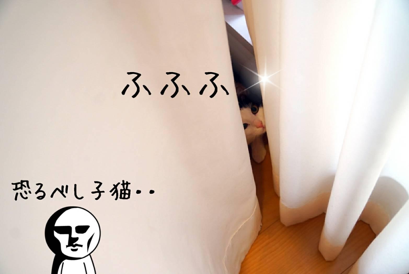 もものカーテン遊び20