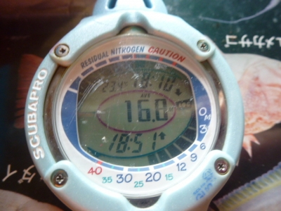 P1060522.jpg
