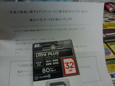 P1060666.jpg