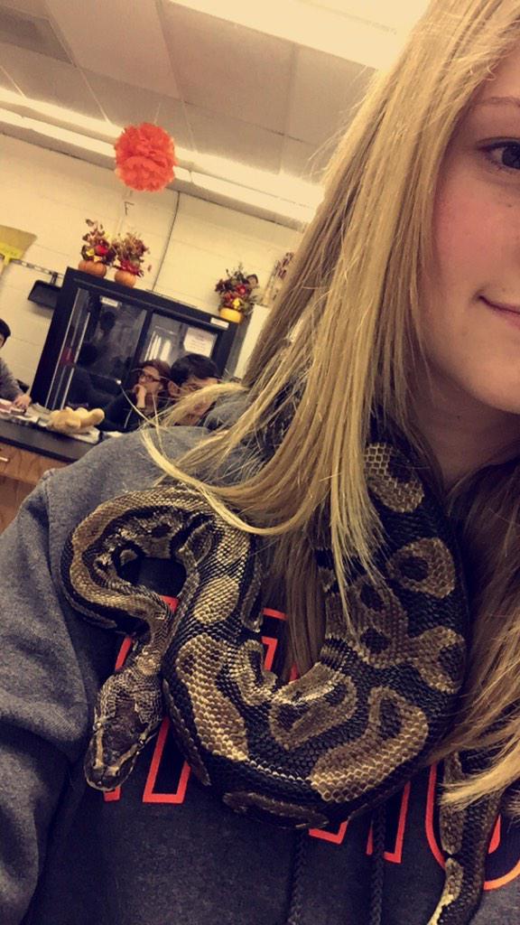 蛇マフラー