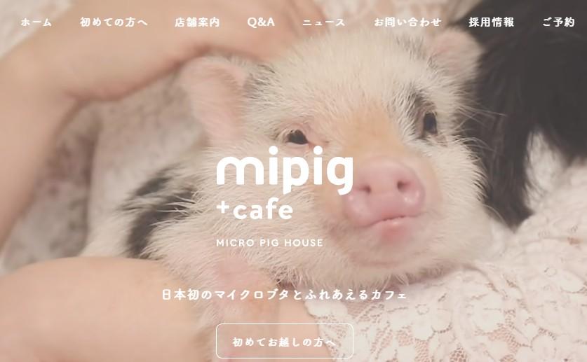 mipigcafe.jpg