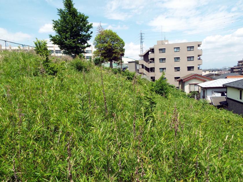 kishimachiB.jpg