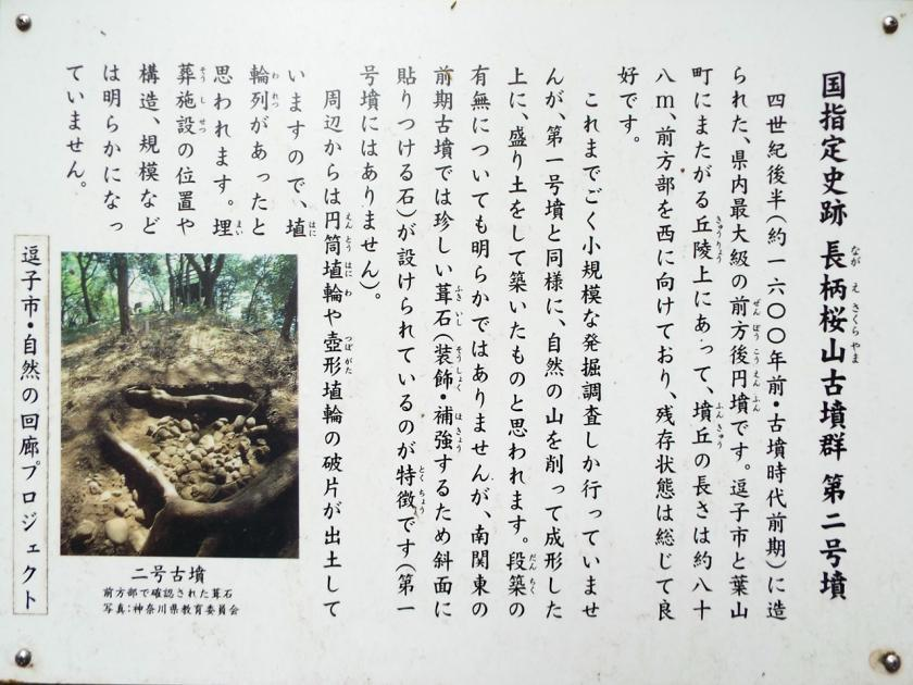nagaesakurayama2kaisetuA.jpg