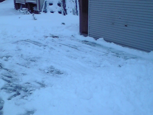 本格的な雪2