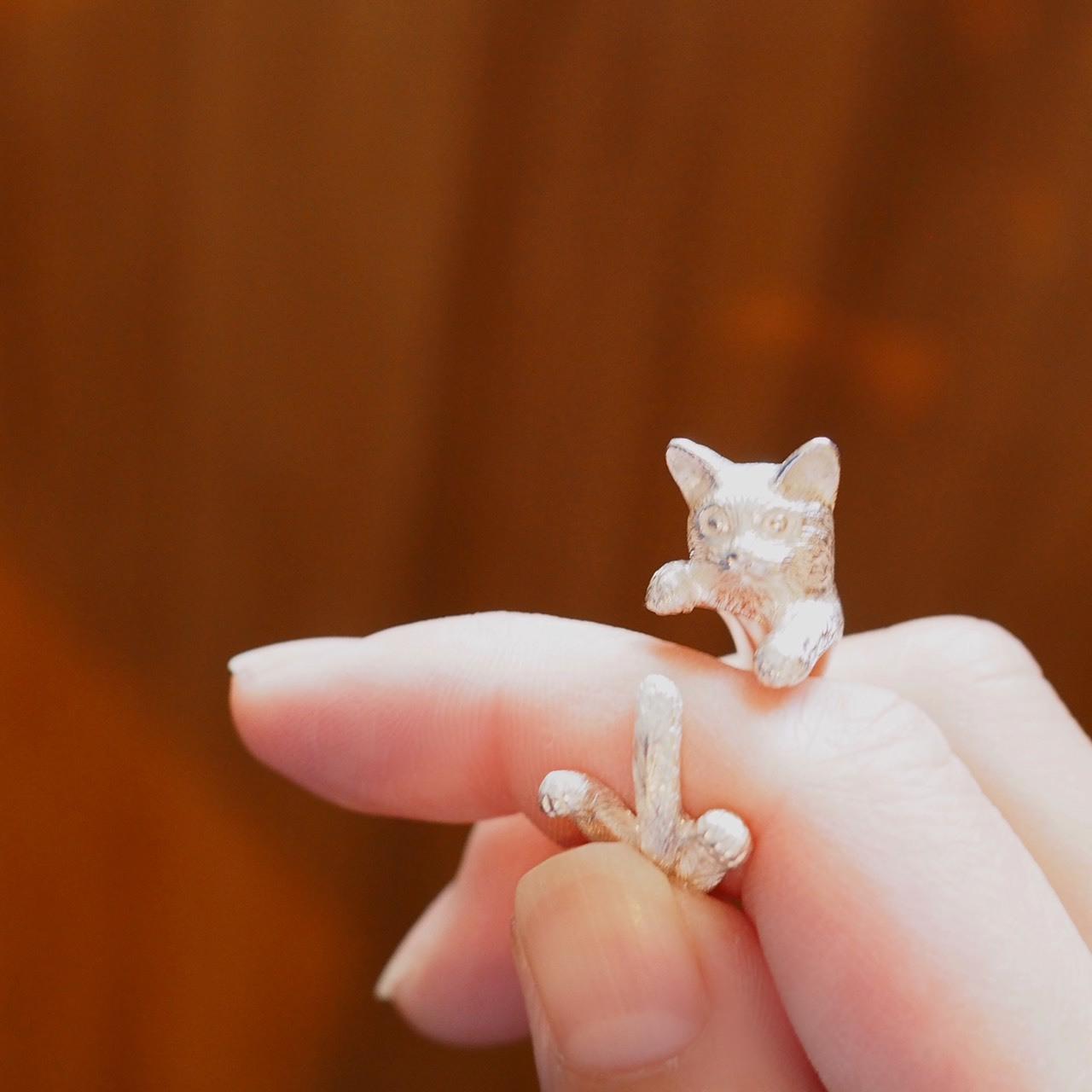 白猫 グリ
