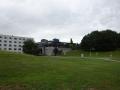 エセックス大学