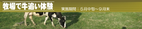 牛追い体験「旭川ふるさと旅行」