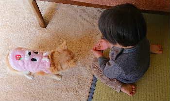 blog2020012801.jpg