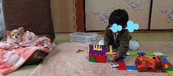blog2020022502.jpg