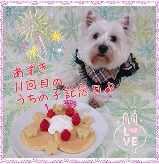 azuki_202005061805367cc.jpg