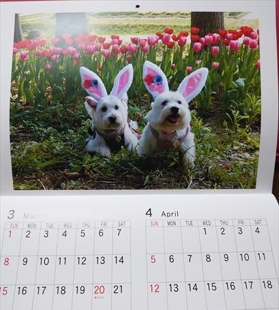 calendar2_20200109192147c7d.jpg