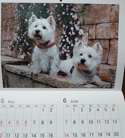 calendar3_20200109192147577.jpg