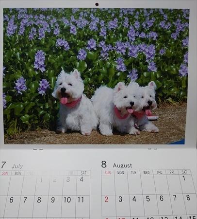 calendar4_202001091921460a6.jpg