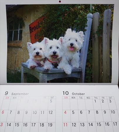 calendar5_20200109192146cfa.jpg