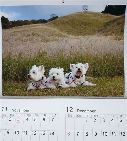 calendar6_20200109195441a8f.jpg