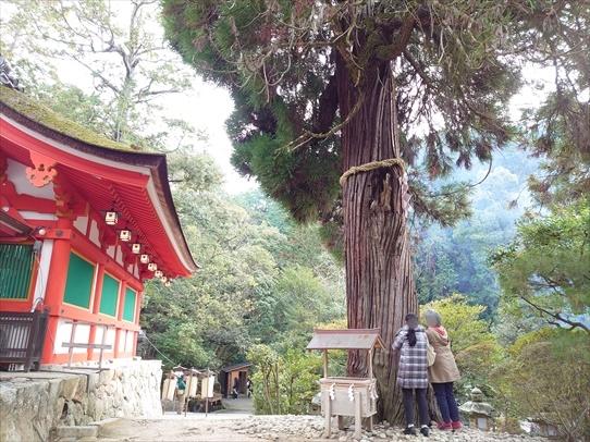 hatsumoude12.jpg
