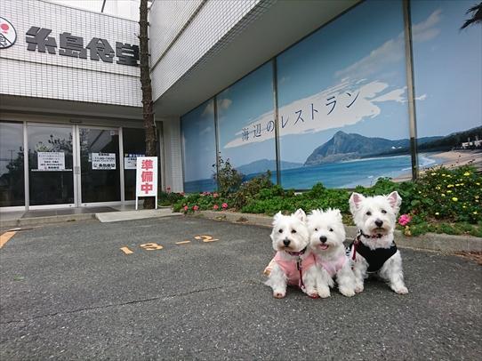 itoshima2.jpg