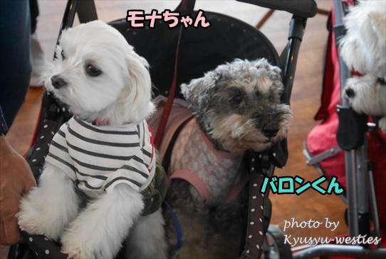 itoshima23.jpg