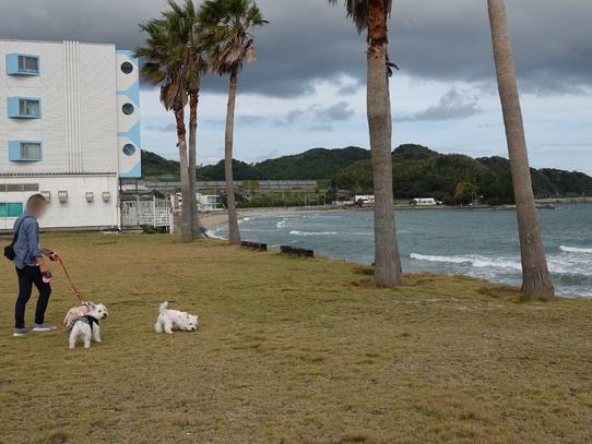 itoshima3.jpg