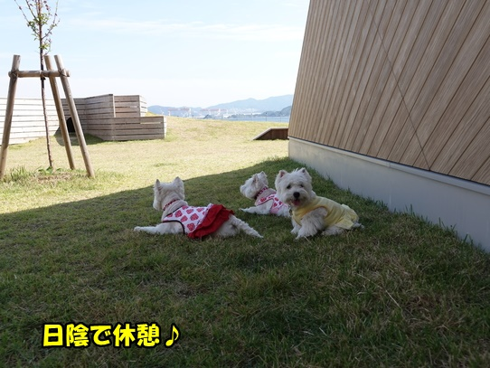 nagasaki24.jpg
